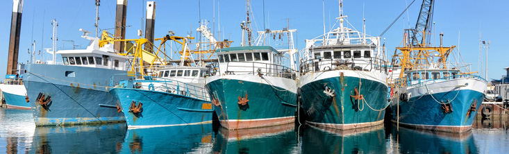 fishing boats 02